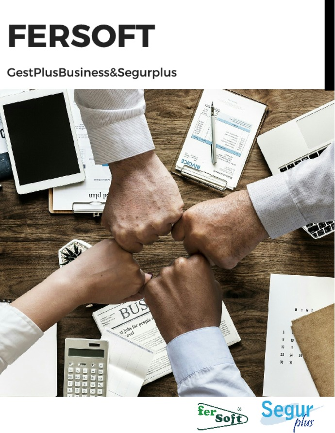Fersoft - GestPlusBusiness&Segurplus
